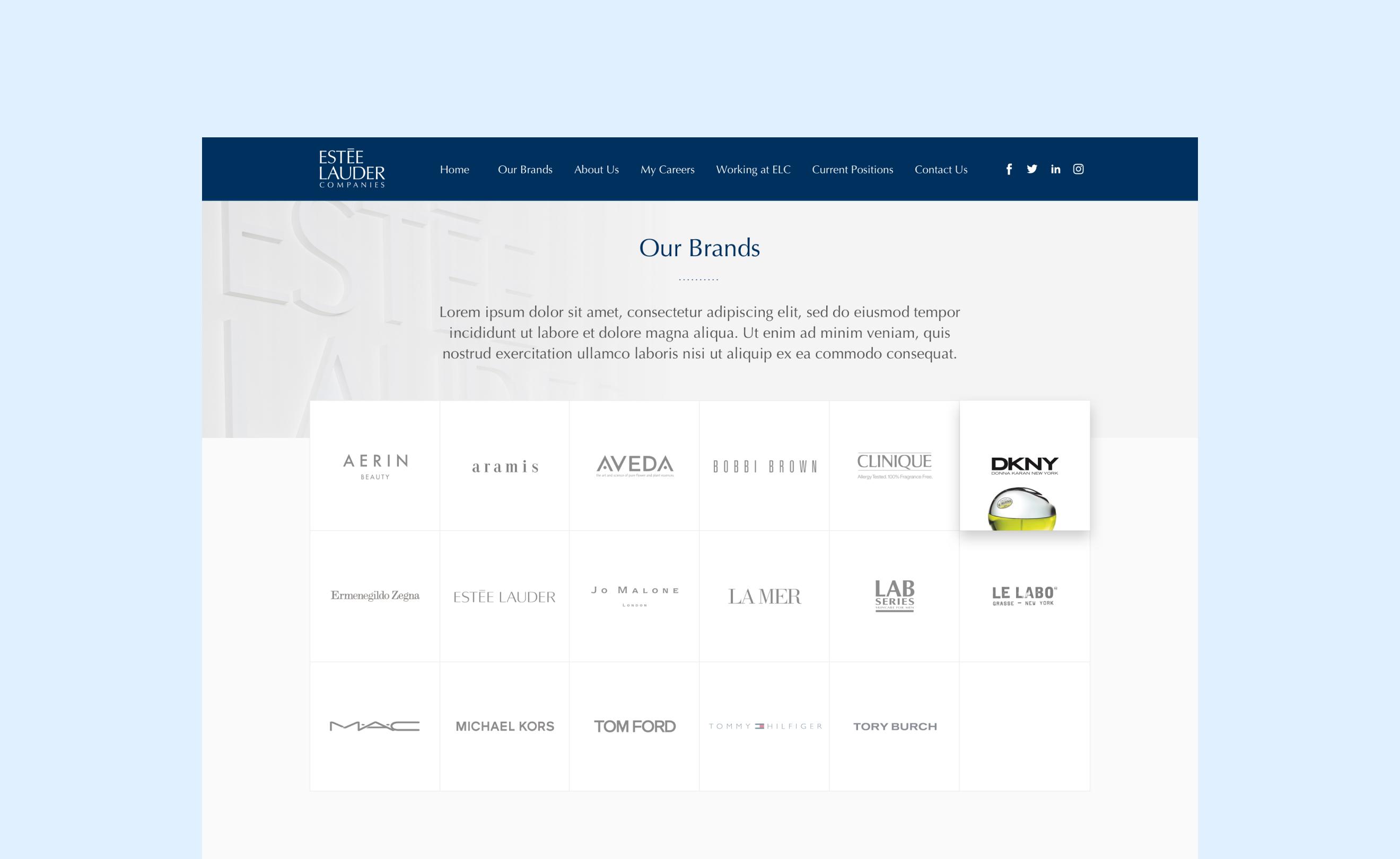 Estee Lauder Career – our brands